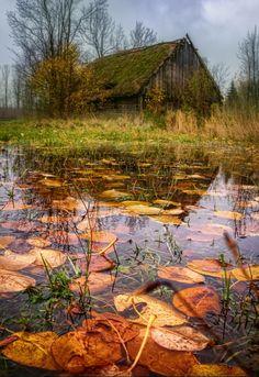 Autumn in Podlasie. Source plus.google.com