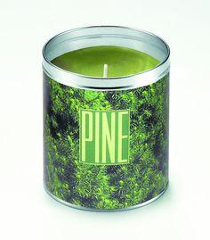 Panoramic Pine Candle