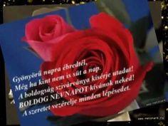 Névnapodra szeretettel...Richard Clayderman-Belle. - YouTube