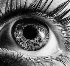 Manchester-based artist Martin Lynch-Smith expertly sketches the human eye, capturing every minute detail. From the wispy hairs of ones eyelashes and the wrinkled creases under the eye to the entrancing texture of the iris, the artist is able to execute h Eye Photography, Artistic Photography, Realistic Pencil Drawings, Art Drawings, Horse Drawings, Photo Oeil, Portrait Au Crayon, Pencil Portrait Artist, Drawn Art