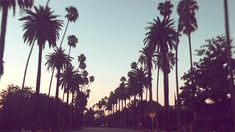 Free People Wholesale X Nordstrom: The Great California Road Trip | Free People Blog #freepeople