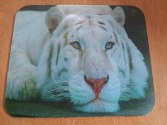 FREE shipping!  Tiger Mouse Pad - Beautiful White Tiger