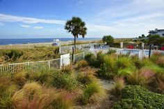 Beachfront Desoto 109 Luxury 3Br 2Ba Condo with 1823 Sq Ft. **New Last Minute Specials! See below!** Amazing view of beach, pool, and beautiful courtyard ....
