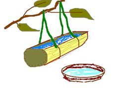 Napájadlo - bambusové korýtko.