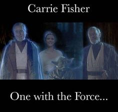 It took away so many people I cared about. Now Carrie is gone? We lost our princess. Star Wars Meme, Star Wars Art, Star Trek, Star Wars Brasil, Princesa Leia, Marvel E Dc, Star Wars Models, Star War 3, The Force Is Strong