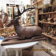 inside the work shop  -a  Amazing  Deer!!