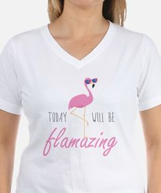 Today Will Be Flamazing Shirt for