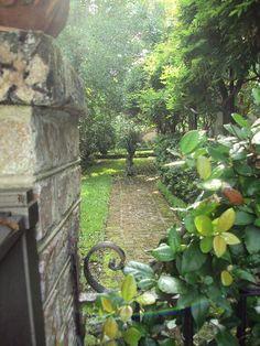 Antique ART Garden: Glimpse of Gardens in downtown Historic Charleston, SC
