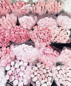 A dozen roses, bottled. Like thousands of petals from a bouquet of fresh cut ro… - Beautiful Flowers My Flower, Pretty In Pink, Beautiful Flowers, Unique Flowers, Pink Love, Beautiful Bouquets, Romantic Flowers, Romantic Ideas, Beautiful Images
