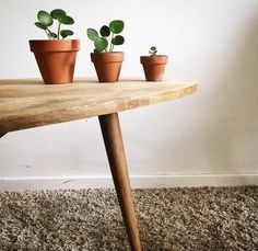 pilea peperomioides - via Sweety Oxalis Landscaping Tips, Green Plants, Home Look, Decoration, Planter Pots, House Design, Contemporary, Ideas, Table