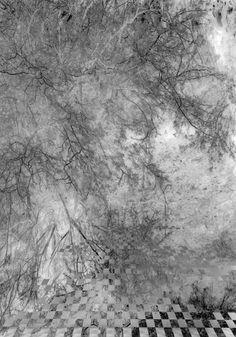 """Juliette Mogenet, """"Faire surface"""", incisions et arrachages sur photographie imprimée sur plexiglas, 100x70cm - exposition à la Graineterie, Centre d'art de la ville de Houilles, 2015"""