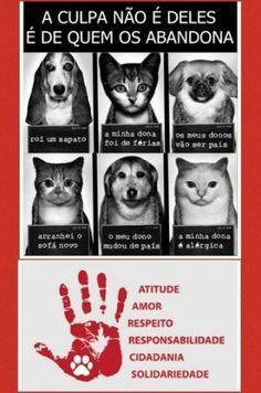 Não abandone os seus animais!