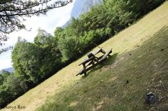 #parconaturale #prealpigiulie #friuliveneziagiulia #montagne #mountains #natura #nature #italy #canon #fotografia #photography #photoshop #focus #alberi #tree #flora #effetto #effect