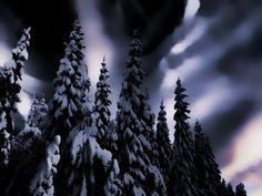 Vinternatt - Norrland