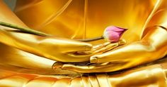 Picture of Lotus in hand image of buddha stock photo, images and stock photography. Easy Meditation, Meditation Practices, Meditation Music, Meditation Buddhism, Spiritual Enlightenment, Guided Meditation, Inspirational Quotes Pictures, Motivational Thoughts, Sutra Du Lotus