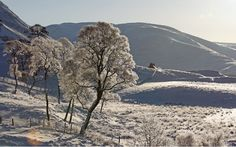 Glen Clunie in Braemar, Scotland, December 2010. Picture: Jeff J Mitchell/Getty Images