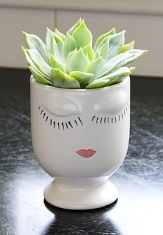 Echeveria Peacockii in a Ceramic Selfie Vase! $33.95 - FREE Shipping! Perfect succulent for the office to light up your desk :) Succulent gifts are perfect for gardening enthusiasts and the most brown-thumbed bestie!