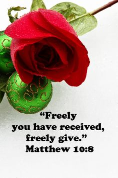 """""""Freely you have received, freely give.""""  Matthew 10:8 -- Explore more quotes on the sacred in life at http://www.examiner.com/article/learning-to-find-the-sacred-life"""