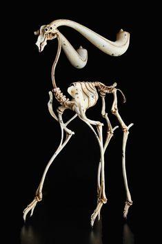 Artists on Steampunk Tendencies Michihiro Matsuoka Animal Skeletons, Animal Skulls, Anatomy Sculpture, Sculpture Art, Fantasy Creatures, Mythical Creatures, Skull Reference, Animal Bones, Tier Fotos