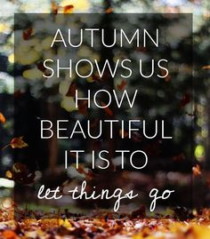 Hello fall! This year is flying by so fast, but I'm ready for sweater weather, Halloween, Thanksgiving... What about you?  #blessed #happyfall #firstdayoffall