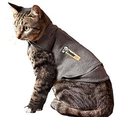 ThunderShirt For Cats >>> You can get more details by clicking on the image.(This is an Amazon affiliate link and I receive a commission for the sales)