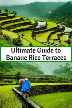 Guide To Banaue Rice Terraces . Ultimate Guide To Banaue Rice Terraces .Ultimate Guide To Banaue Rice Terraces . Sin título Travel Inspiration Videos Bali Rice Terraces in Banaue Bohol, Palawan, Beautiful Places To Visit, Cool Places To Visit, Places To Travel, Travel Destinations, Siargao, Cebu, Manila