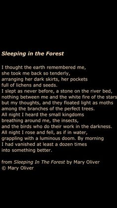 Next time you are at the bookstore, look up Mary Oliver in the poetry section. She will change your life. (For real.)