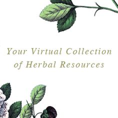 Enrich and inspire your herbal studies with The Herbarium!