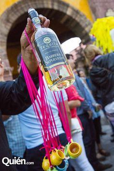 tequila \ mexico \ celebracion \ fiestas \ boda \ cumpleaños \ callejoneada