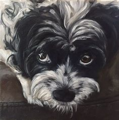 Paint a dog portrait step-by-step, final painting