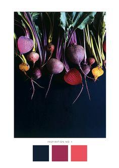 grandstoriesdesign | Inspiration & Illustration #colors #colorscheme #paperlove #blogpost #designblog