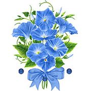September: Morning Glory and Sapphire. Anni Arts Birth Flowers & Gems Luxury Printable Crafts