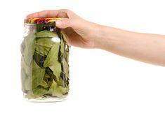 Viete že bobkový list je plný antioxidantov: Pomôže vám proti kašľu či nachladnutiu, ale aj pri nespavnosti. Detox, Aloe Vera, Mason Jars, Water Bottle, Food And Drink, Drinks, Healthy, Butterflies, Drinking