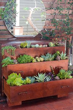 driven by his love of succulents to create a tiered garden out of the drawers. He drilled plenty of holes in the bottoms to provide proper drainage and ensure the beloved succulents wouldn't be sitting in soggy soil. This is a brilliant solution for those with green thumbs but limited gardening space.