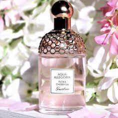 Aqua Allegoria Flora Cherrysia EDT from Guerlain is a fragrance that recreates a walk in a garden fu Parfum Guerlain, Parfum Rose, Rose Perfume, Fragrance Parfum, Fragrance Mist, Aqua, Best Fragrances, Cosmetics & Perfume, Make Up