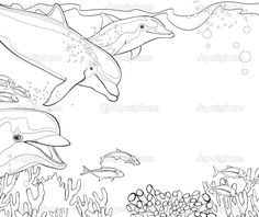 Coloring Pages for Adults Only | The coloring book - dolphins - coral reef - illustration for the ...