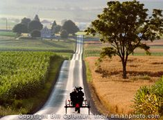 Lancaster County Pennsylvania.  One of my favorite places to go in the U.S.   running errands ....... Amish life