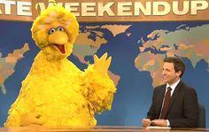 big bird | Big Bird lands on 'Saturday Night Live,' declines to comment on Mitt ...