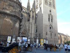Esta imagen de la catedral de Sevilla y los carruajes de caballo como medio de transporte turístico, se la podríamos enseñar a los niños con el fin de que conozcan un medio de transporte típico de la ciudad sevillana (sobre todo para turistas). Ya que el carruaje de caballos no es algo común que puedan observar en la Región de Murcia.