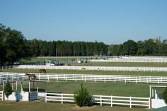 Horse Property For Sale in Bulloch County , Georgia, Equestrian Property Located in Southeast Bulloch County Georgia. This Equestrian facility consists of 40 +/- acres of fenced pasture. Included are two high-end horse barns that will stall 25 horses. There is a 4 horse equicizer on the property. There is a workshop, feed room, hay storage, as well as a blacksmith room. There are caretakers quarters built in the large barn.