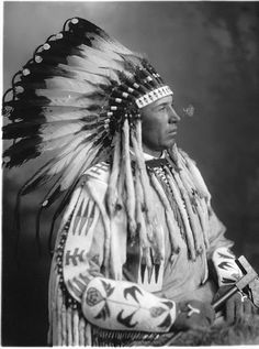 Free archive of historic Native American Indian Tribes Photographs, Pictures and Images. Photographs promote the Native American Tribes culture Native American Shirts, Native American Images, Native American Beauty, Native American Tribes, Native American History, American Indians, Native Americans, Blackfoot Indian, Indian Tribes