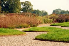 Piet Oudolf, Public Garden, Hauser & Wirth, Somerset. Located at Durslade Farm on the edge of the ancient town of Bruton in the southwest of England.  _/////_