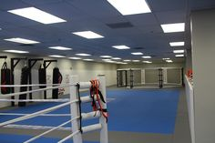 Submission Grappling Area, and Octagon Cage, Boxing Ring, Muay Thai Bags, Boxing Bags #FunkionalFitness