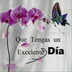 Good Day Quotes, Morning Love Quotes, Good Morning Funny, Morning Greetings Quotes, Good Morning Messages, Good Morning Good Night, Love Messages, Morning Images, Hello In Spanish