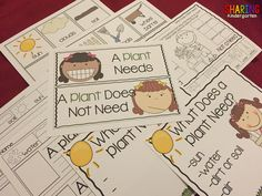 What does a plant need? Plants {Print & Play Pack}