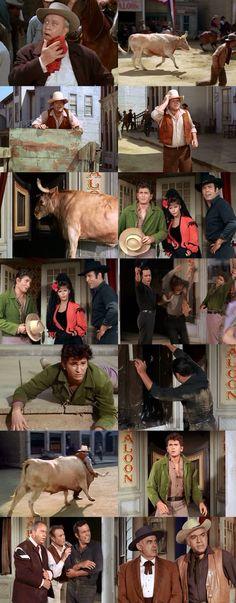 Adam, Hoss, and Joe tangle with a rampaging bull. Olé! From Ponderosa Matador (Bonanza)