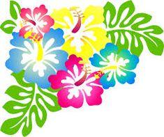 Resultado de imagen de flor hawaiana