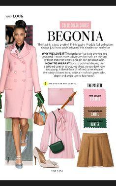 Instyle Magazine Color Crash Course - Begonia pg1