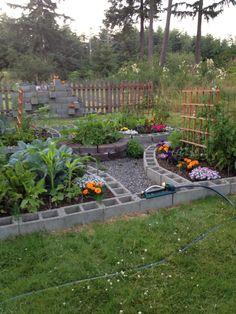 My amazing cinderblock square foot garden