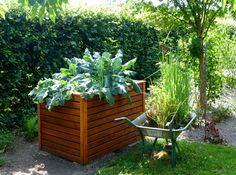 Raised beds are awesome for becoming just about anything, yet there are some genuine stars that transcend the rest. Here are the five best vegetables for raised beds.